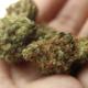 canada-legalizes-cannabis-640px